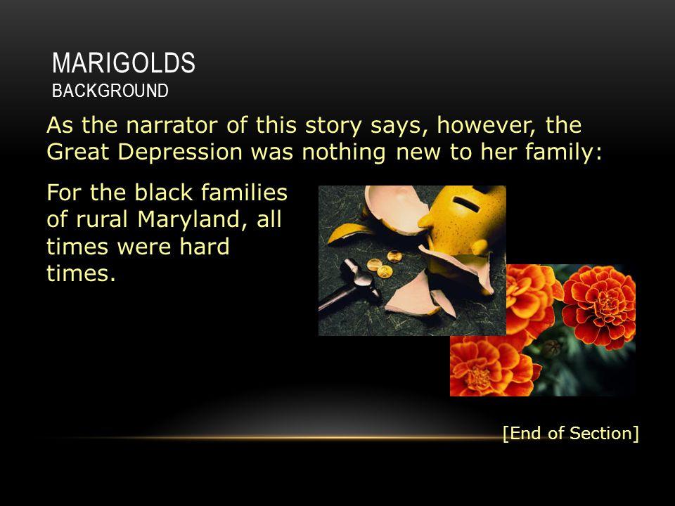 marigolds short story