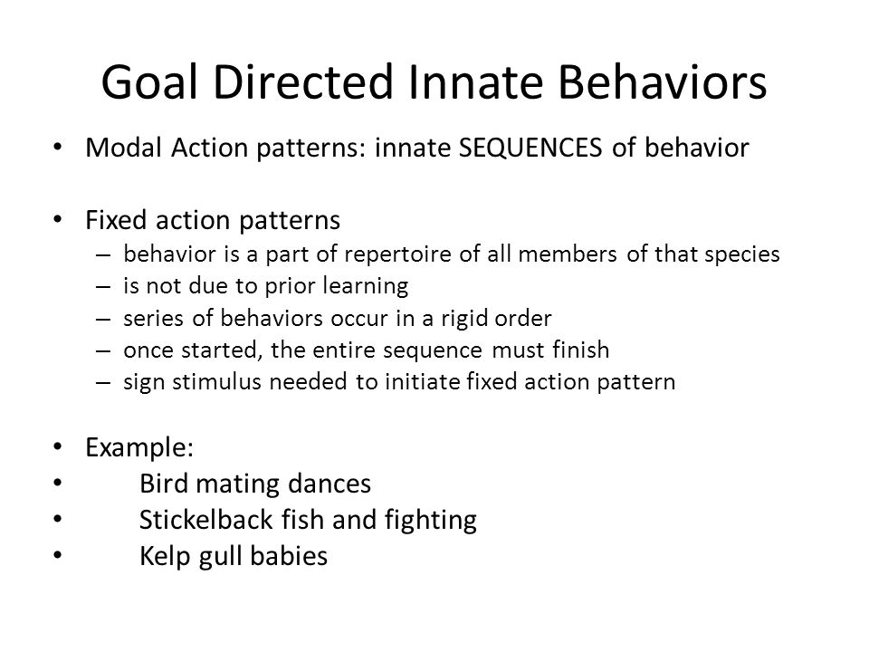 Innate Behavior And Learning Ppt Download