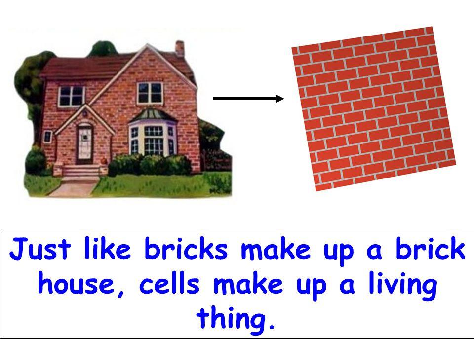 how to make a brick house