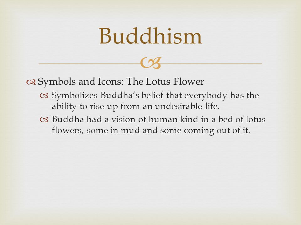 Buddhism Lotus Flower Meaning Choice Image Flower Decoration Ideas