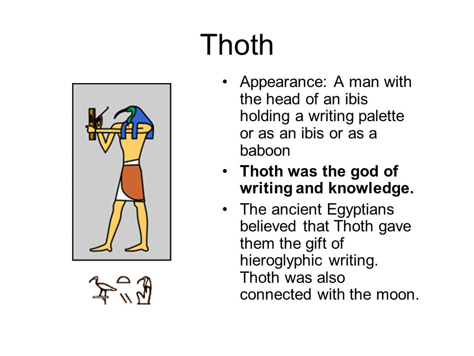 Thoth Appearance: A man with the head of an ibis holding a writing palette or as an ibis or as a baboon.