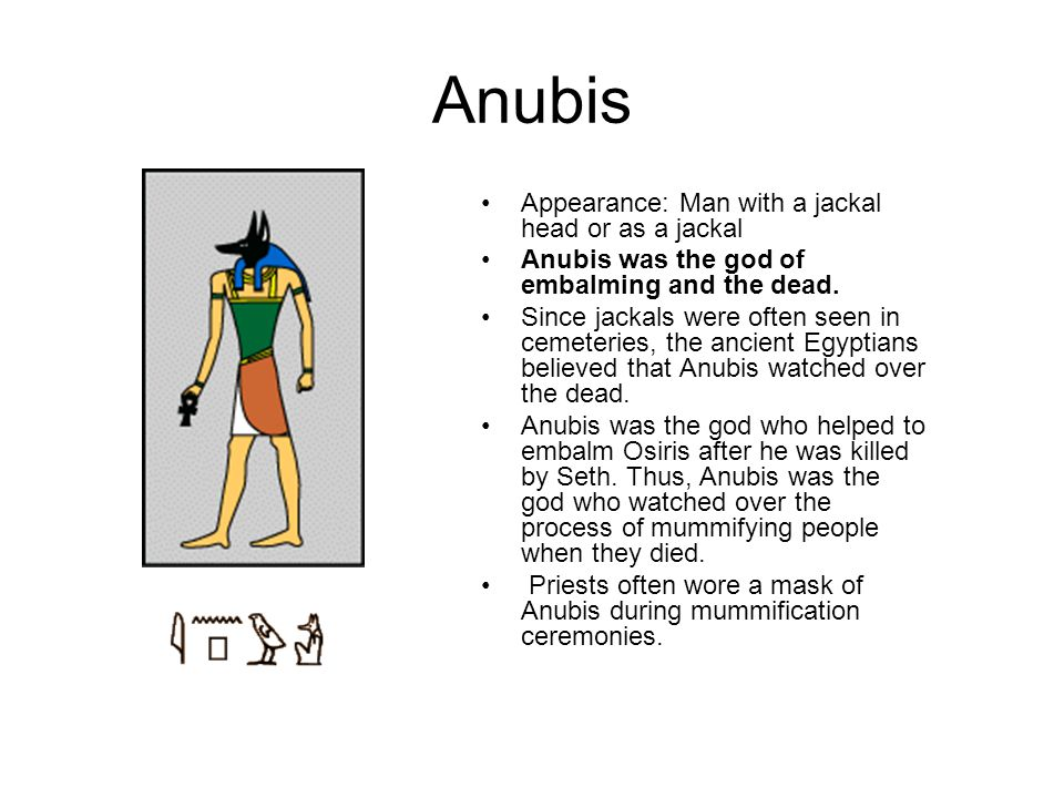 Anubis Appearance: Man with a jackal head or as a jackal