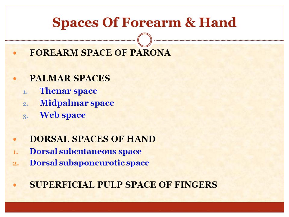 FASCIAL SPACES OF FOREARM AND HAND - ppt video online download