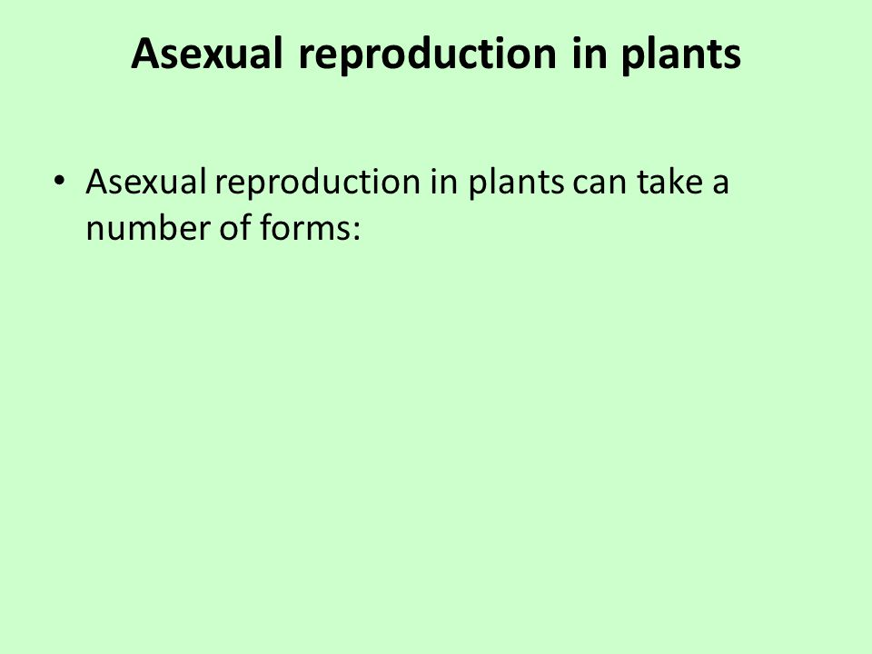 Asexual propagation pdf to jpg