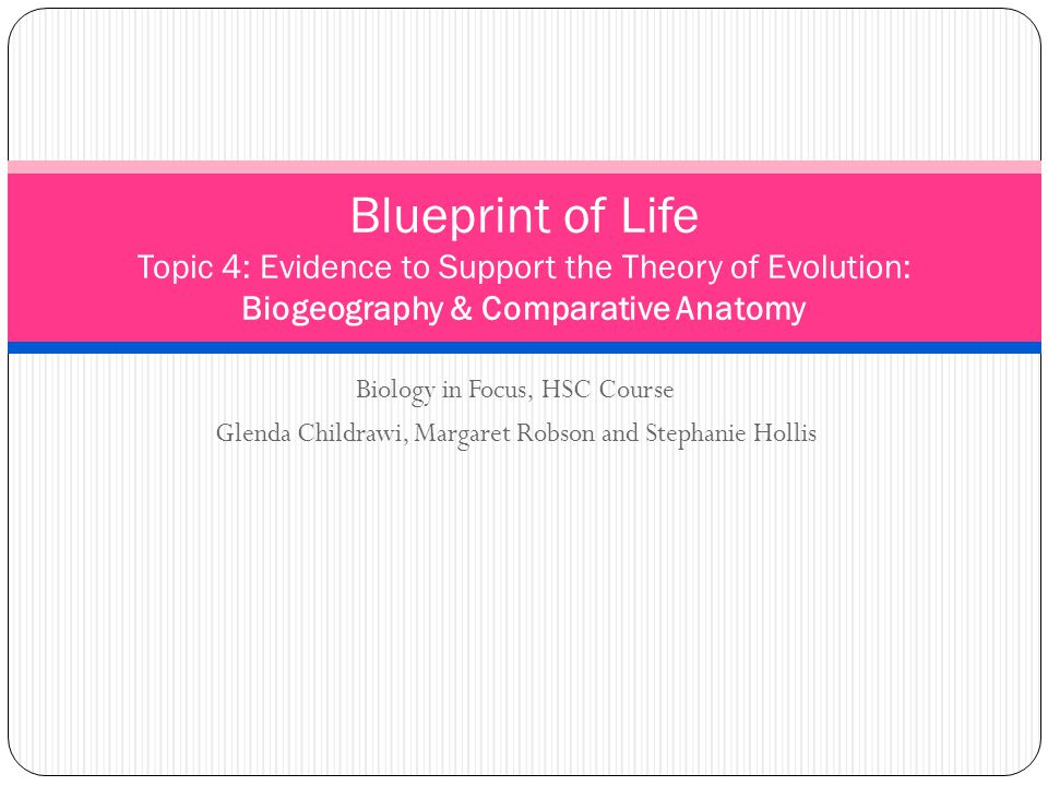 Blueprint of life topic 4 evidence to support the theory of 1 blueprint malvernweather Image collections