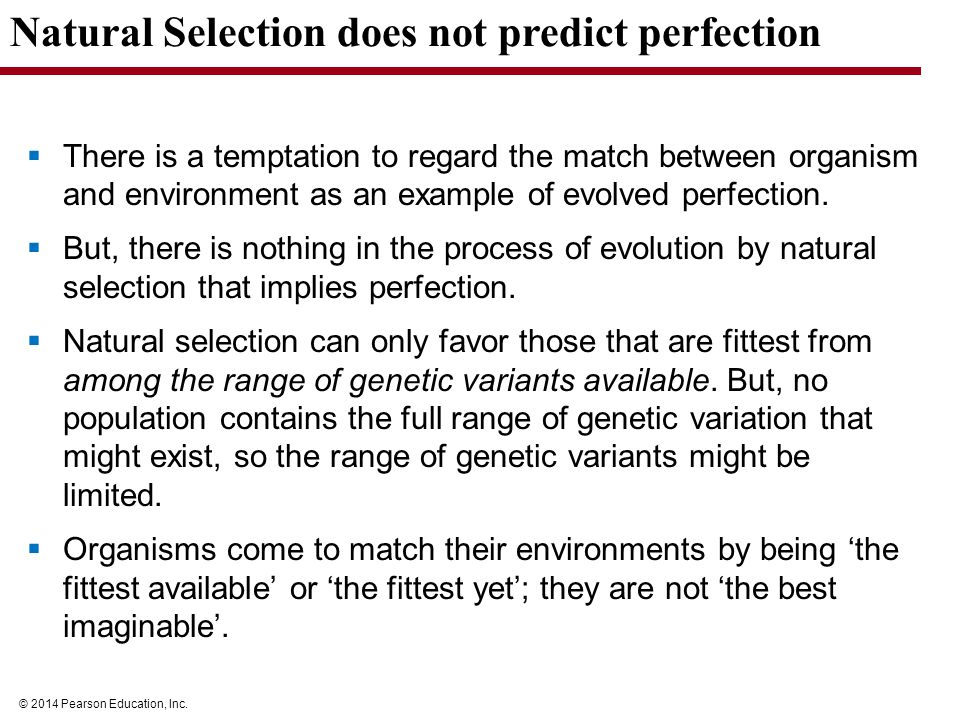 Natural Selection The Principle That Among The Range Of