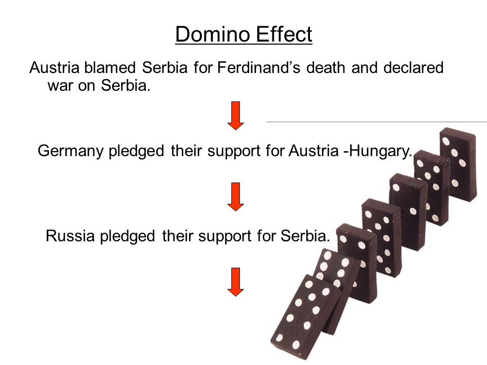 Domino Effect Austria blamed Serbia for Ferdinand's death and declared war on Serbia. Germany pledged their support for Austria -Hungary.