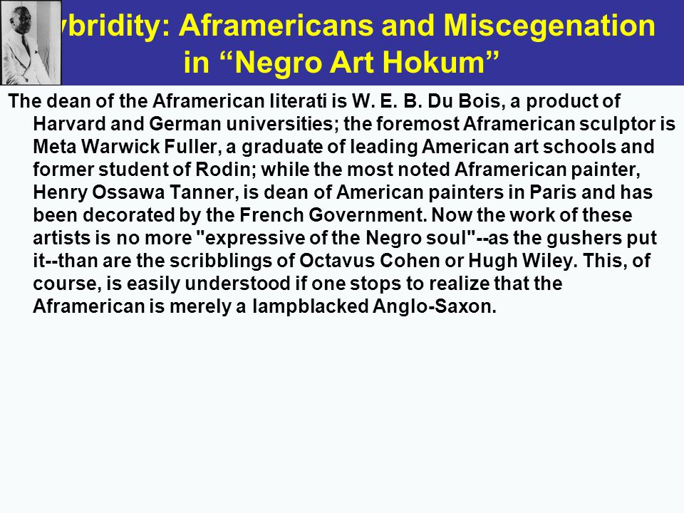 the negro art hokum