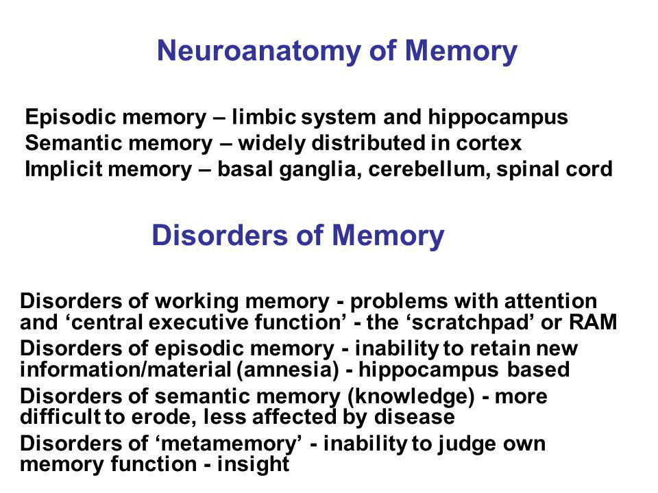 Neuroanatomy of Memory Episodic memory – limbic system and hippocampus Semantic memory – widely distributed in cortex Implicit memory – basal ganglia, cerebellum, spinal cord