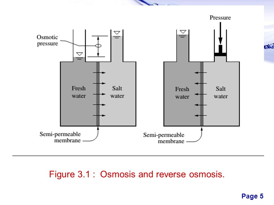 Figure 3.1 : Osmosis and reverse osmosis.