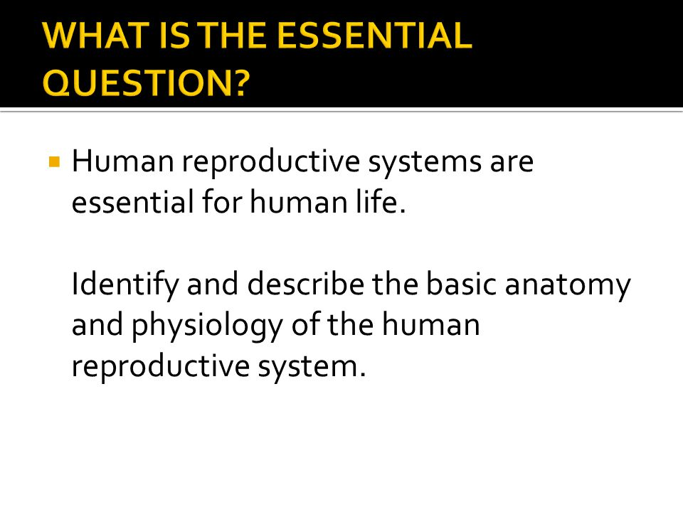 Topic 18- Human Reproductive System - ppt video online download