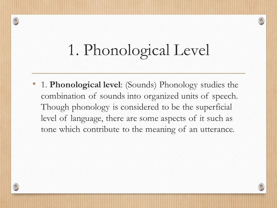 1. Phonological Level