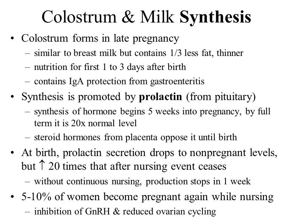 Poglavje 28 Ženski reproduktivni sistem - Ppt Video-3988