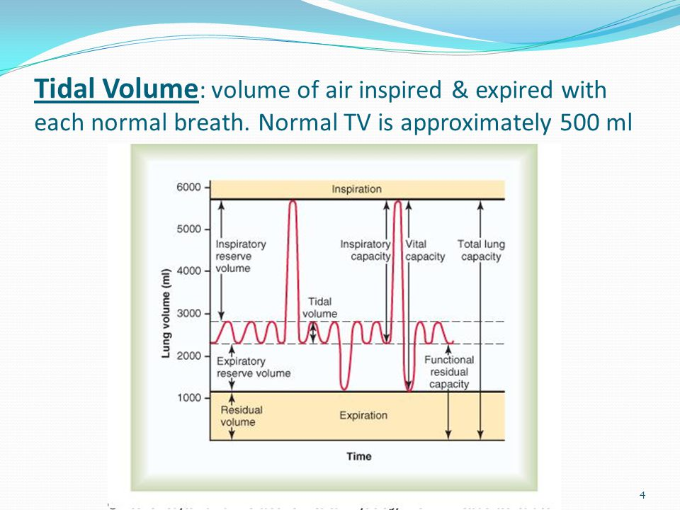 Tidal Volume: volume of air inspired & expired with each normal breath
