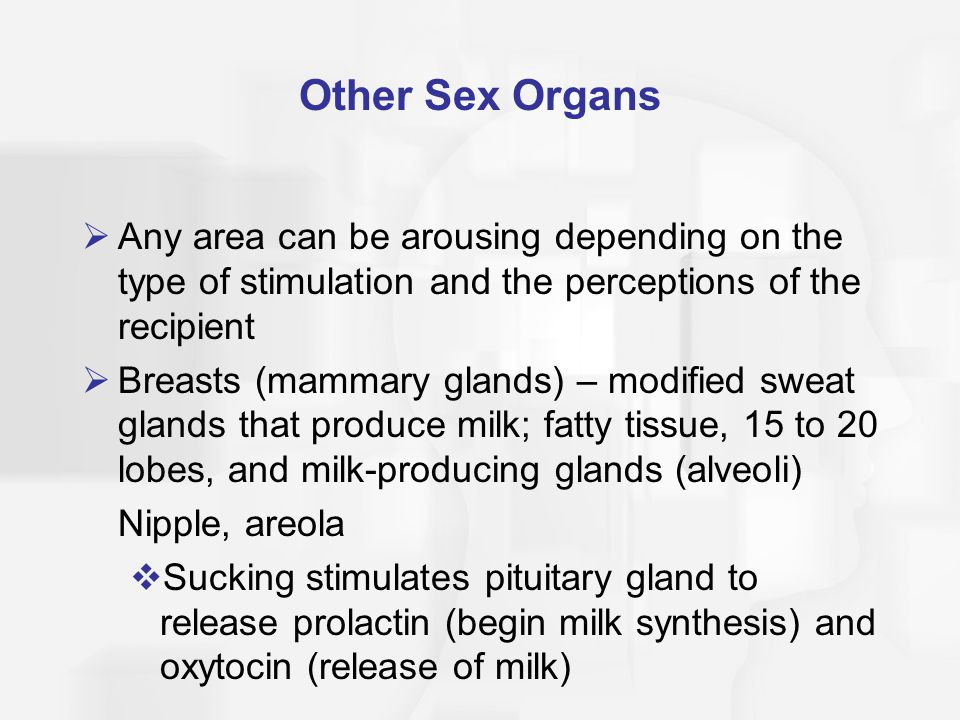 Sudoriferous glands two types of sexual harassment