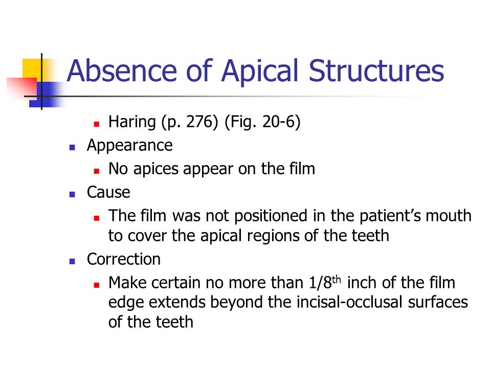 Absence of Apical Structures