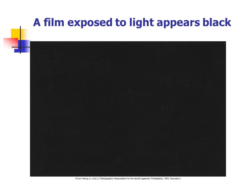 A film exposed to light appears black