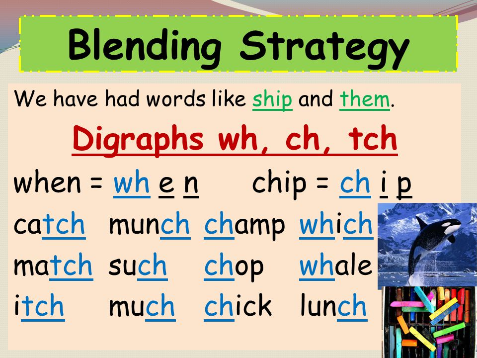Blending Strategy Digraphs wh, ch, tch when = wh e n chip = ch i p