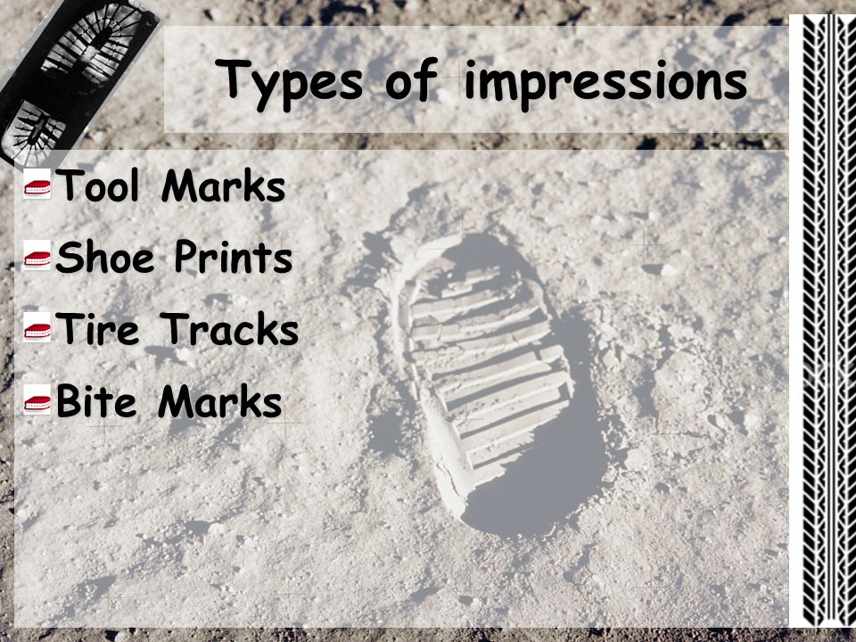 Impressions Chs Forensics Ppt Video Online Download