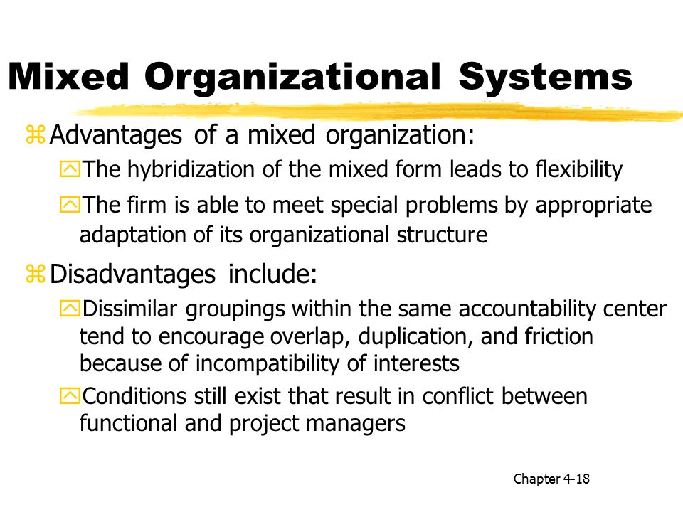 advantages of project organizational structure