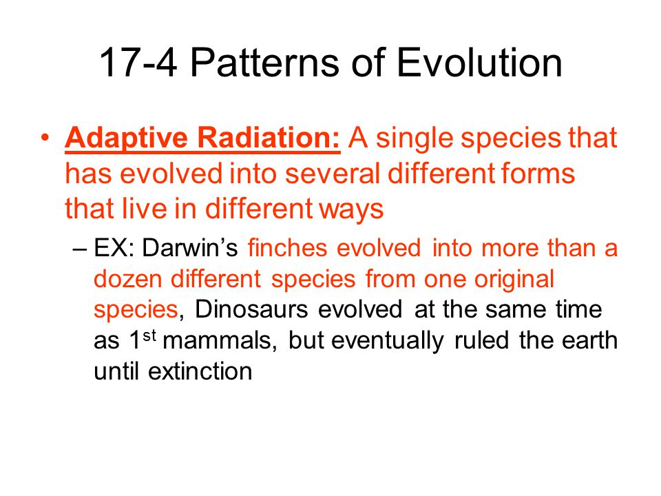 The History Of Life Chapter 60 Pgs Ppt Video Online Download Best Section 174 Patterns Of Evolution