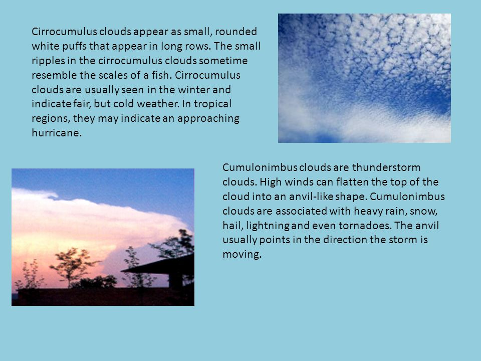 Cirrocumulus clouds appear as small, rounded white puffs that appear in long rows. The small ripples in the cirrocumulus clouds sometime resemble the scales of a fish. Cirrocumulus clouds are usually seen in the winter and indicate fair, but cold weather. In tropical regions, they may indicate an approaching hurricane.
