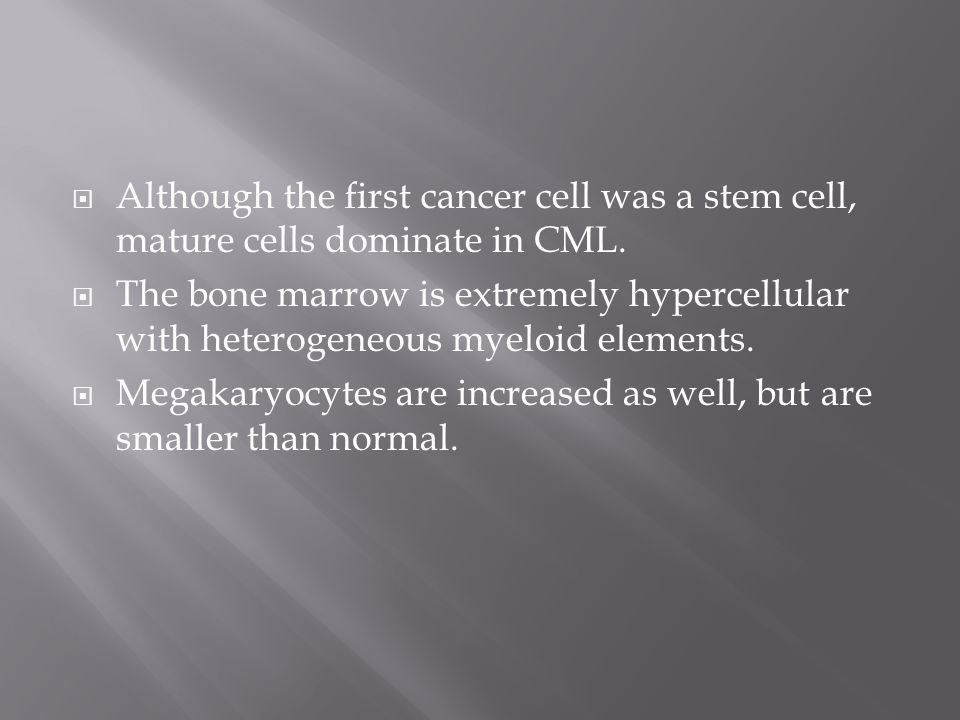 Although the first cancer cell was a stem cell, mature cells dominate in CML.