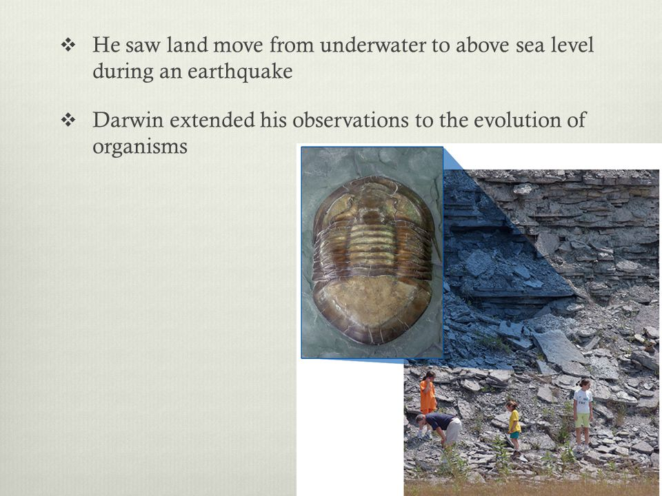 He saw land move from underwater to above sea level during an earthquake