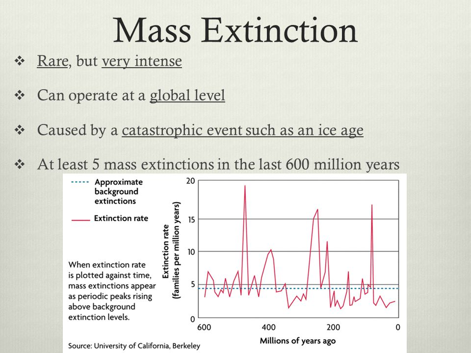 Mass Extinction Rare, but very intense Can operate at a global level