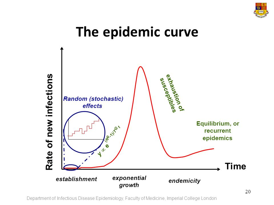 exhaustion of susceptibles Equilibrium, or recurrent epidemics