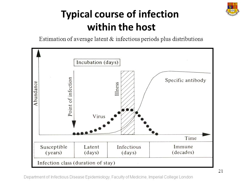 Typical course of infection within the host