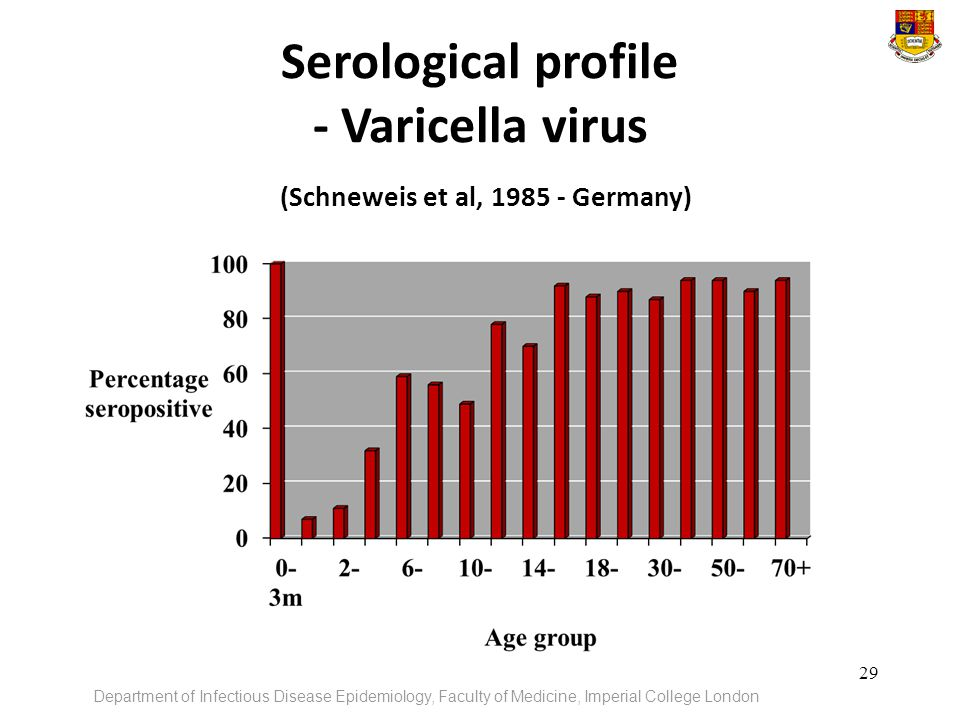 Serological profile - Varicella virus (Schneweis et al, Germany)