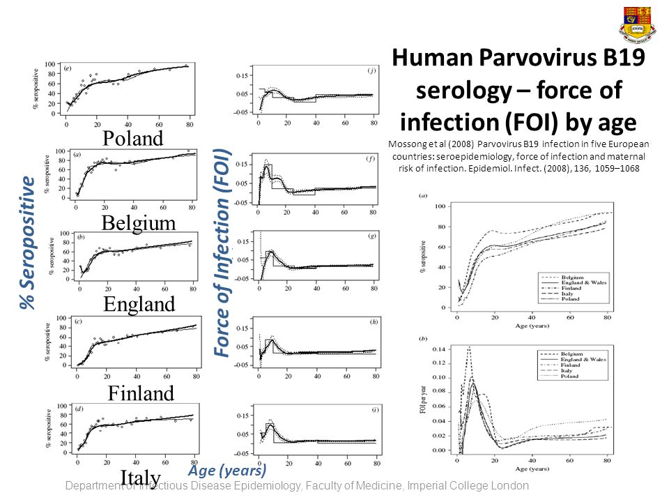Human Parvovirus B19 serology – force of infection (FOI) by age Mossong et al (2008) Parvovirus B19 infection in five European countries: seroepidemiology, force of infection and maternal risk of infection. Epidemiol. Infect. (2008), 136, 1059–1068