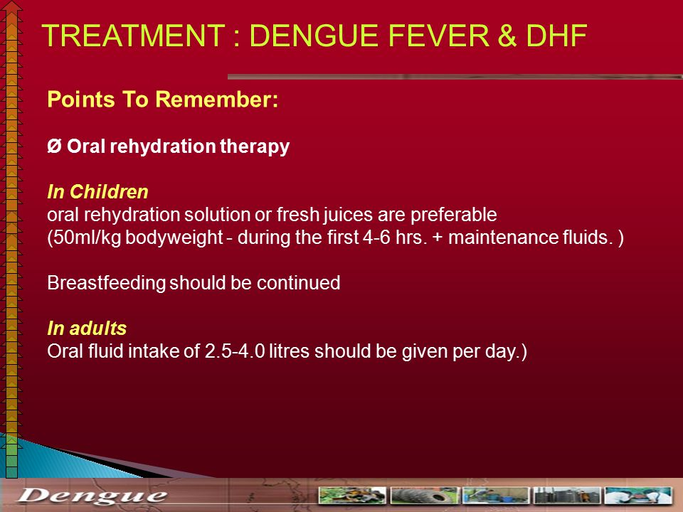 DENGUE AND ITS MANAGEMENT - ppt video online download