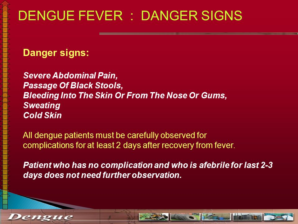 Stupendous Dengue And Its Management Ppt Video Online Download Ibusinesslaw Wood Chair Design Ideas Ibusinesslaworg