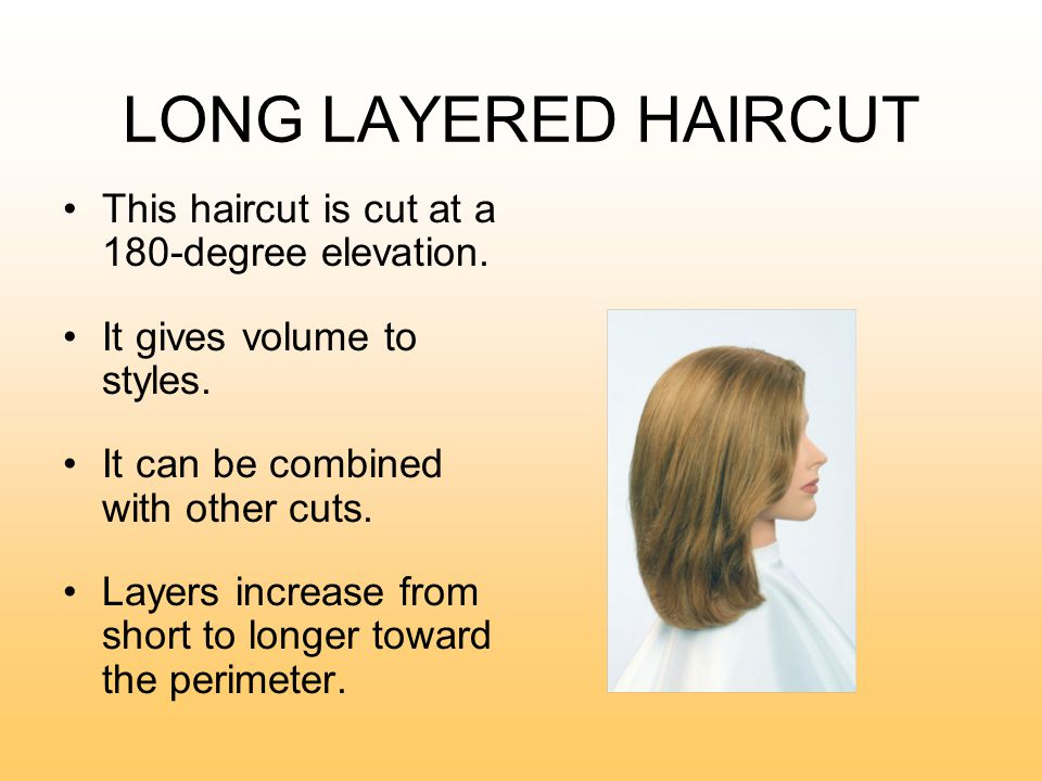 on hair cutting diagram