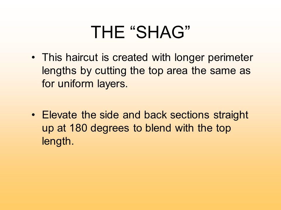 THE SHAG This Haircut Is Created With Longer Perimeter Lengths By Cutting  The Top Area The