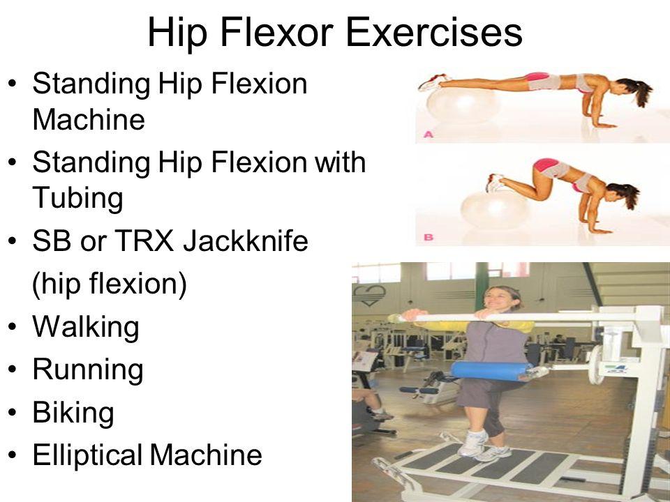 Hip Flexors and Hip Extensors - ppt video online download
