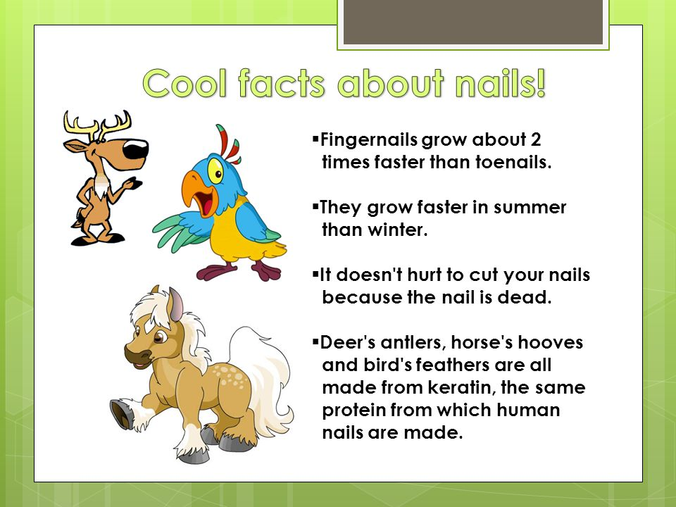 Cool facts about nails! Fingernails grow about 2