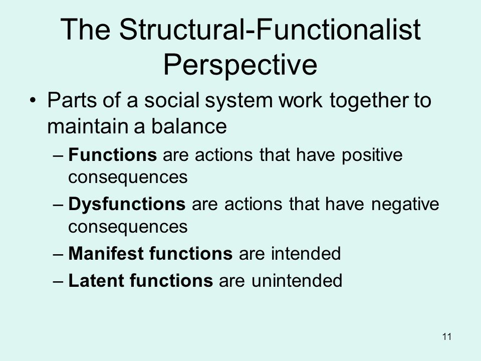 The Structural-Functionalist Perspective