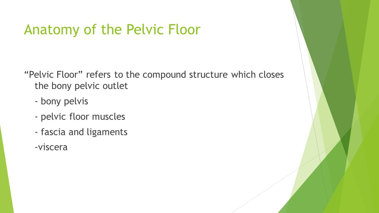 Incorporating Pelvic Floor and Diaphragm Training into Core Programs ...