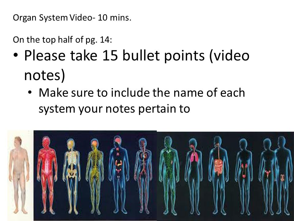 Please take 15 bullet points (video notes)
