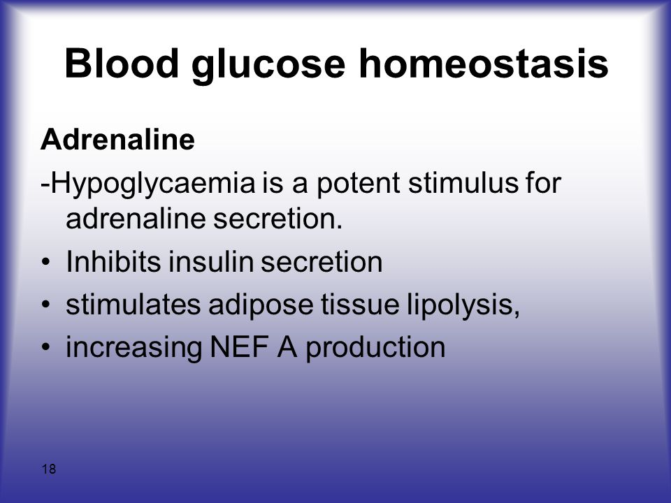 Blood glucose homeostasis