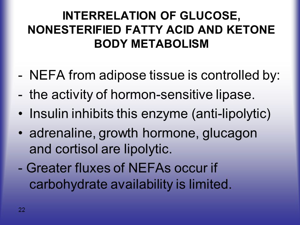 NEFA from adipose tissue is controlled by:
