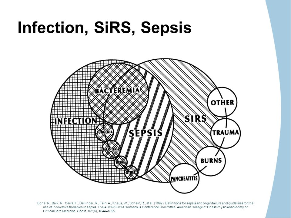GUIDELINES AND APPLICATION TO SEPSIS MANAGEMENT - ppt video