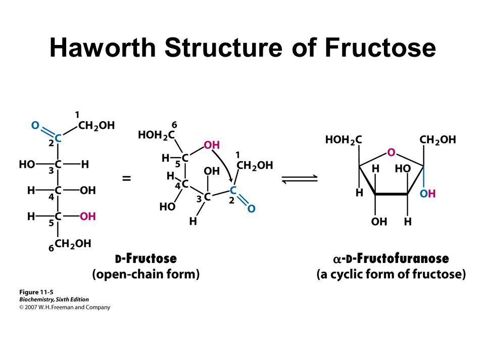 10 haworth structure of fructose