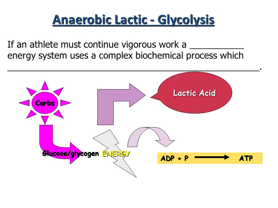 Anaerobic Lactic - Glycolysis