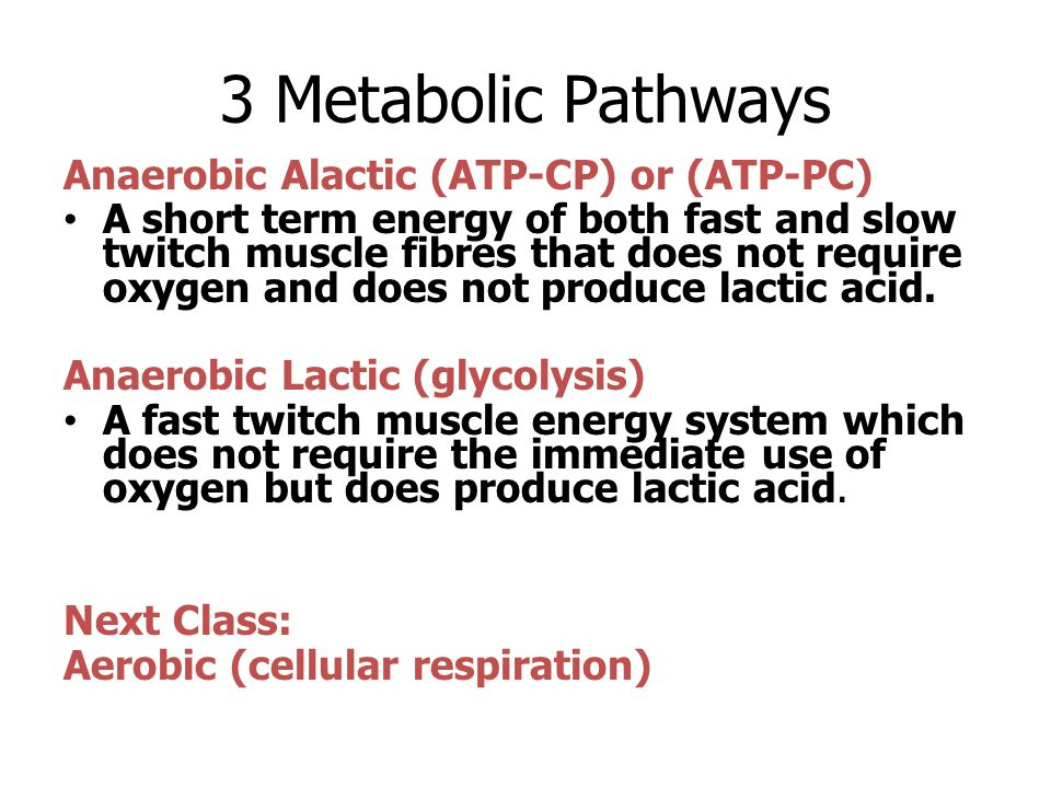 3 Metabolic Pathways Anaerobic Alactic (ATP-CP) or (ATP-PC)