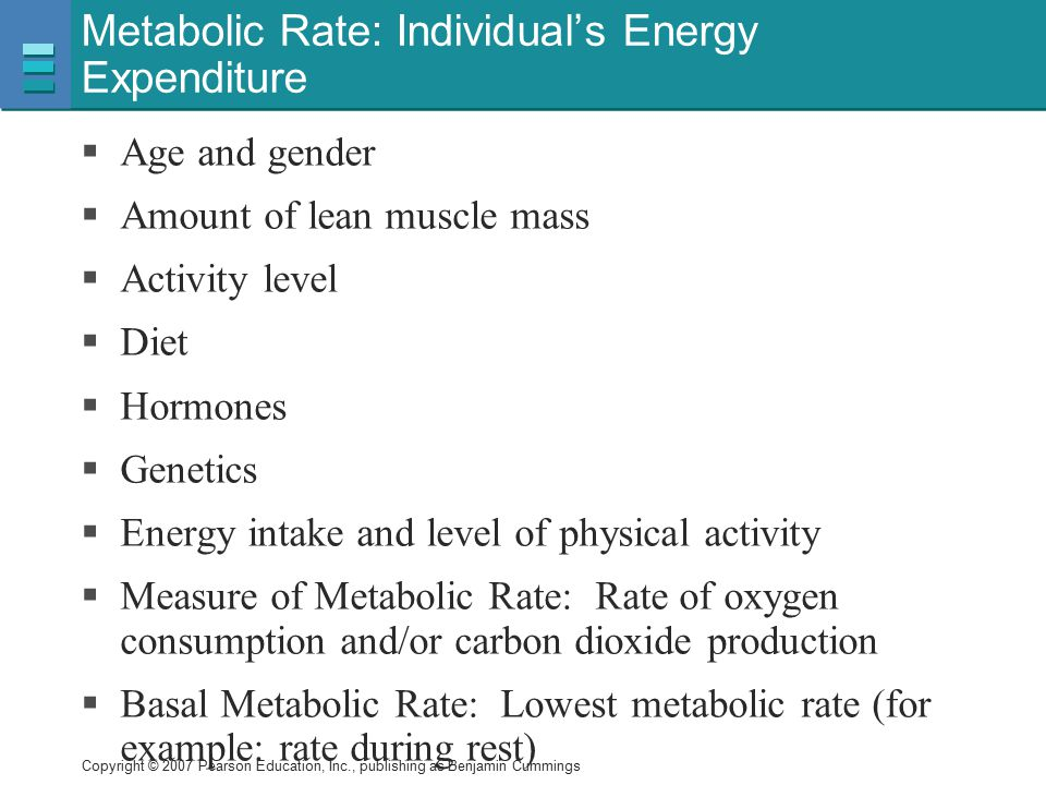 Metabolic Rate: Individual's Energy Expenditure