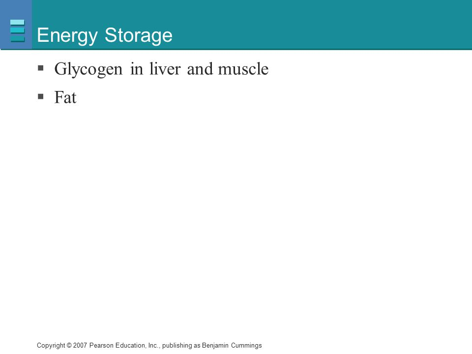 Energy Storage Glycogen in liver and muscle Fat